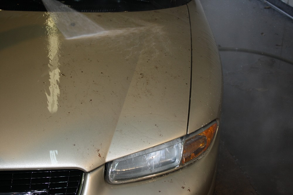 Spray off Bugs